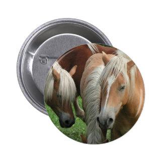 Palomino Herd Round Button