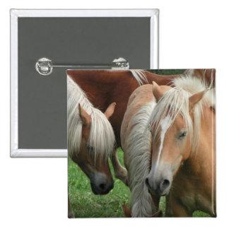 Palomino Herd Square Pin