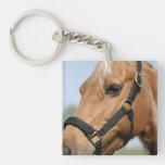 palomino-horse-4 llaveros