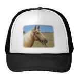 Palomino Horse 9R015D-184 Hat