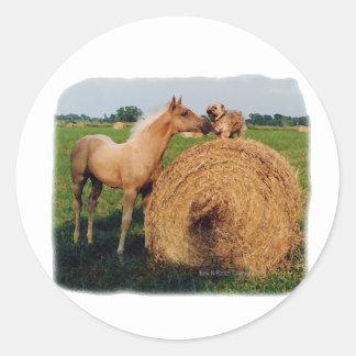Palomino Horse and Dog Meeting Classic Round Sticker