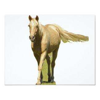 Palomino Horse Card