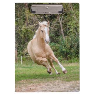 Palomino Horse Clipboard