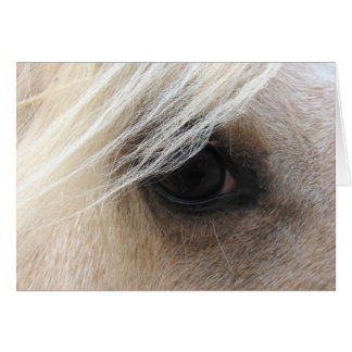 Palomino Horse Eye Card