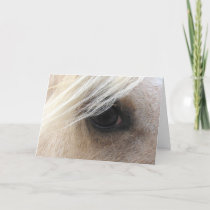 Palomino Horse Eye, Fathers Day Card
