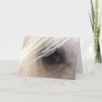 Palomino Horse Eye, Fathers Day Card