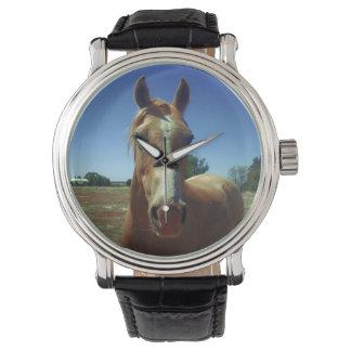 Palomino Horse Face, Wristwatch