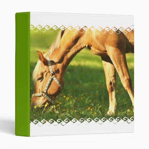 Palomino Horse Grazing Binder