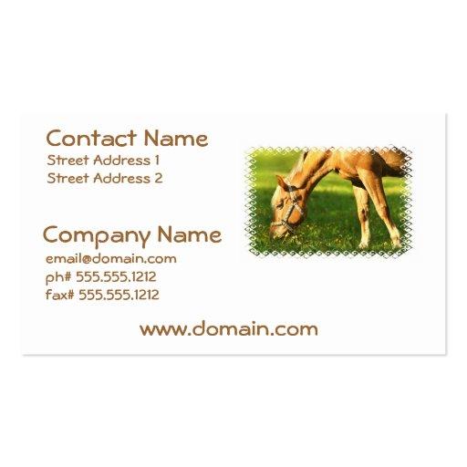 Palomino Horse Grazing Business Card