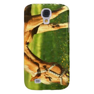 Palomino Horse Grazing iPhone 3G Case Samsung Galaxy S4 Case