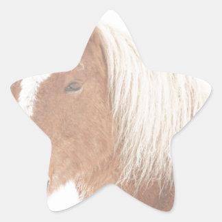 Palomino Horse Headshot Snow and Fog Star Sticker