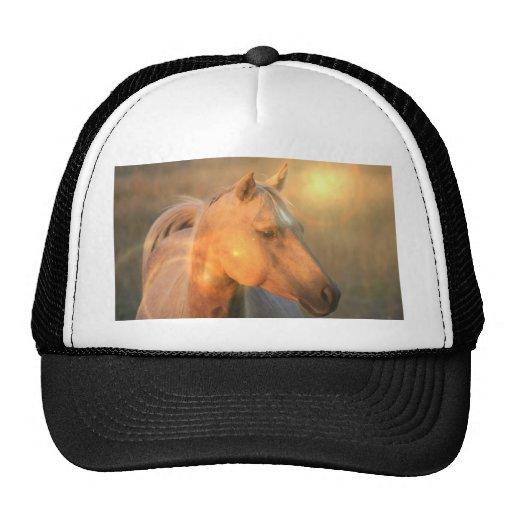 Palomino Horse in Light Baseball Cap Trucker Hats