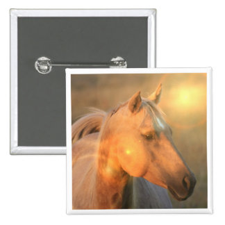 Palomino Horse in Light Square Button