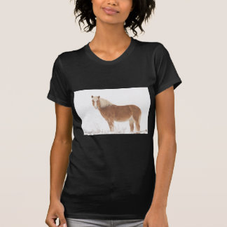 Palomino Horse in the Snow T Shirts