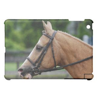 Palomino Horse iPad Case