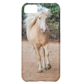 Palomino Horse iPhone 5C Cover