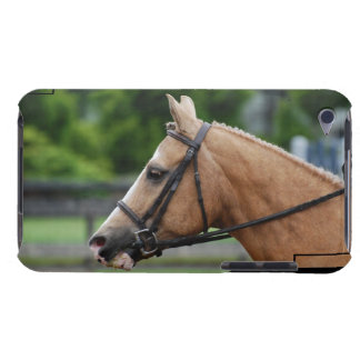 Palomino Horse iTouch Case Case-Mate iPod Touch Case