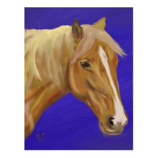 Palomino Horse Postcard