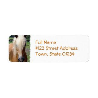 Palomino Horse Return Address Label
