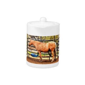 Palomino Horse Tea Pot