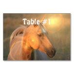 Palomino Horses Table Cards
