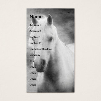 Palomino in Black and White Business Card