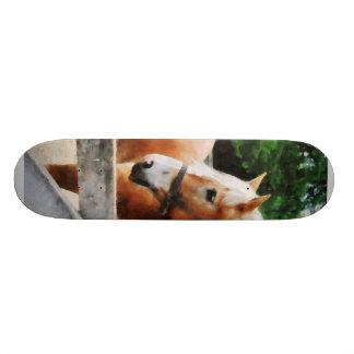 Palomino in Paddock Custom Skate Board