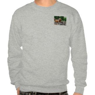 Palomino in Paddock Pullover Sweatshirt