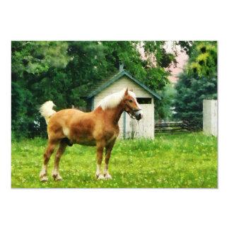 Palomino in Pasture Card
