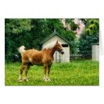 Palomino in Pasture Greeting Card