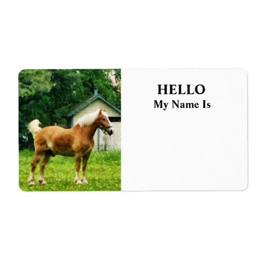 Palomino in Pasture Personalized Shipping Label