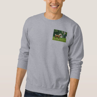 Palomino in Pasture Pull Over Sweatshirt