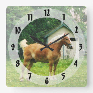 Palomino in Pasture Square Wall Clock