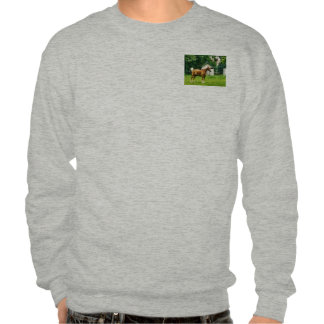 Palomino in Pasture Pullover Sweatshirts