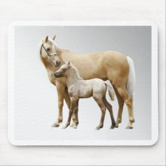 Palomino Mare & Foal Mouse Pad