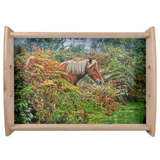 Palomino New Forest Pony Horse-lover Nature Photo Serving Tray