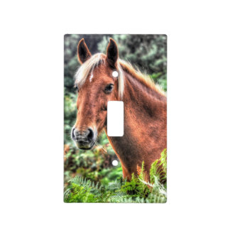 Palomino New Forest Pony Wild Horse Photo Switch Plate Cover