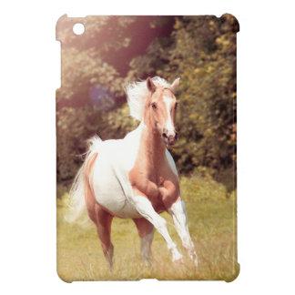 Palomino Paint caballo galopa sobre un prado