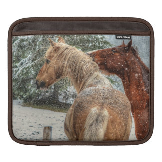 Palomino Paint & Chestnut Horse Friends and Snow iPad Sleeves