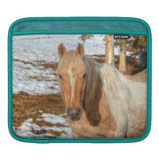 Palomino Paint Horse and Snow Equine Photo Sleeves For iPads
