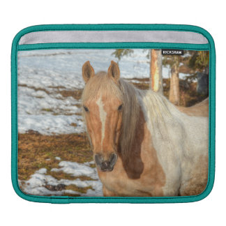 Palomino Paint Horse and Snow Equine Photo Sleeve For iPads