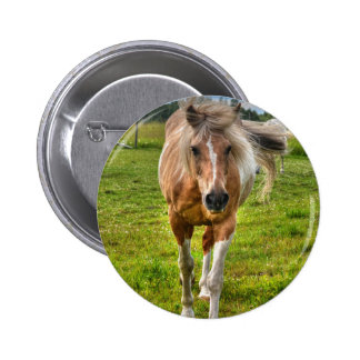 Palomino Paint Horse-lovers Gift Collection Buttons