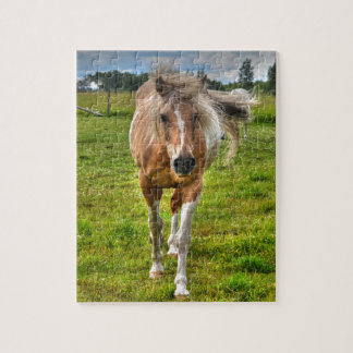 Palomino Paint Horse-lovers Gift Collection Puzzle