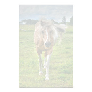 Palomino Paint Horse-lovers Gift Collection Custom Stationery