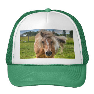 Palomino Paint Horse-lovers Gift Collection Trucker Hat