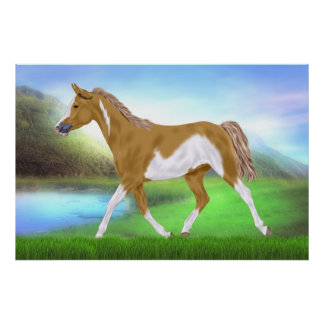 Palomino Paint Horse Poster