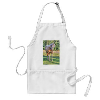 Palomino Paint Pinto Horse Being Cute Adult Apron