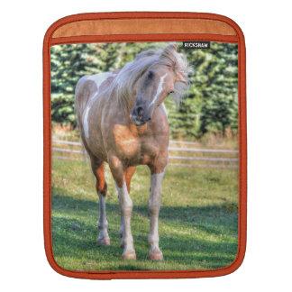 Palomino Paint Pinto Horse Being Cute iPad Sleeve