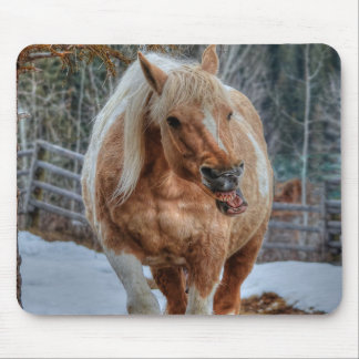 Palomino Paint Ranch Horse Equine Photography Mouse Pad