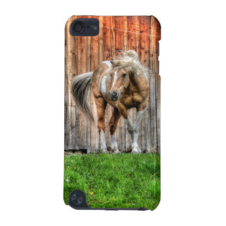 Palomino Paint Stallion and Barn for Horse-lovers iPod Touch 5G Case
